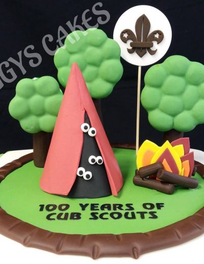 100 years of cub scouts