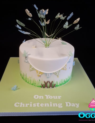Rabbit & Butterfly Christening Cake